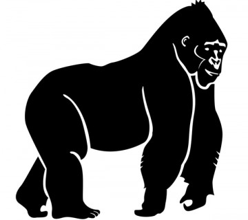 Gorilla Sticker 24 x 24