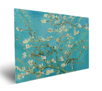 Almond Tree in Blossom by Vincent van Gogh