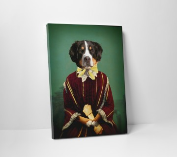 Bernese Mountain Dog in Graduation Gown