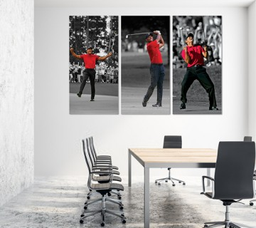 Tiger Woods world champion 3 panel stretched canvas frames