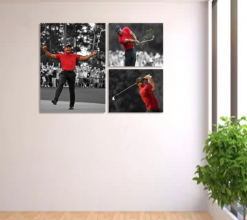 Tiger Woods - 3 Panel Wall Display Stretched Canvas Frames