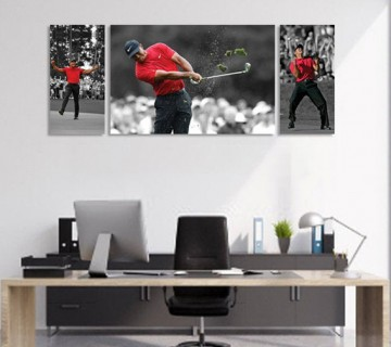 Tiger Woods different 3 Panel stretched canvas frames